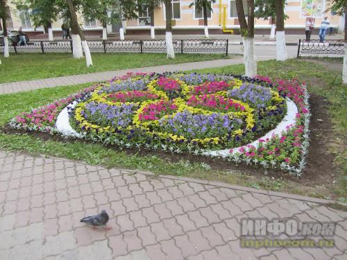 Электросталь, праздник цветов - 2014, конкурс