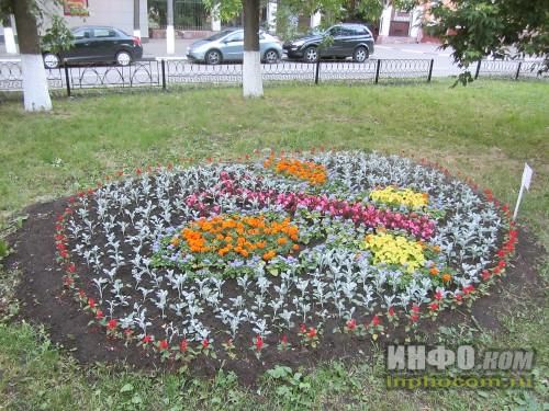 Электросталь, праздник цветов - 2014, ещё одна бабочка